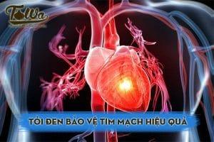 Tỏi đen bảo vệ tim mạch